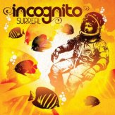Incognito | Surreal | Meltdown Show