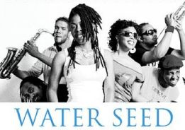 Water Seed   Wonder Love